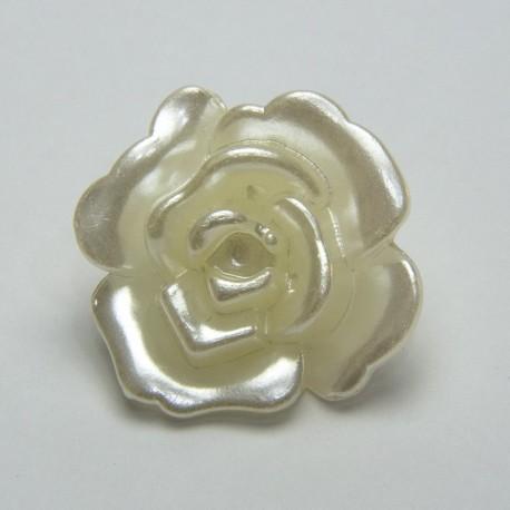 Rose bianco perlate